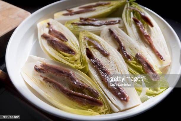 preparing chicory with anchovies - hauts de france stock photos and pictures