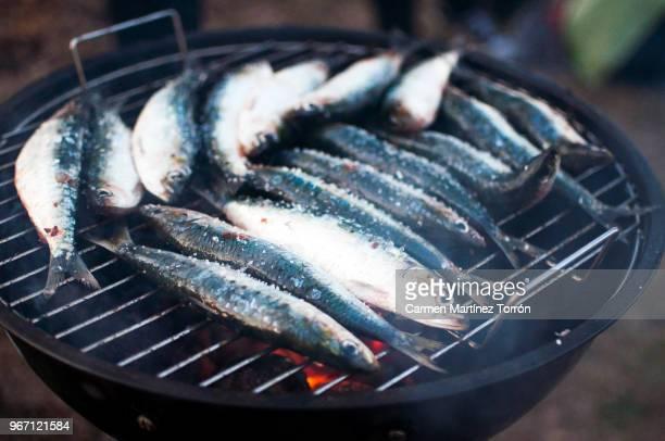 preparing fish and adding salt on barbecue grill - galicia fotografías e imágenes de stock