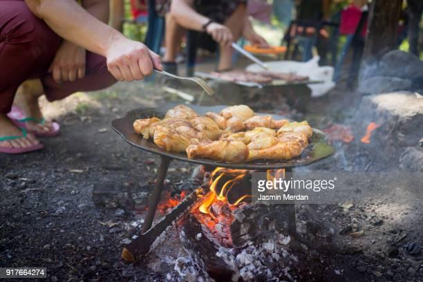 preparing food for family at picnic in nature - wildnis stock-fotos und bilder
