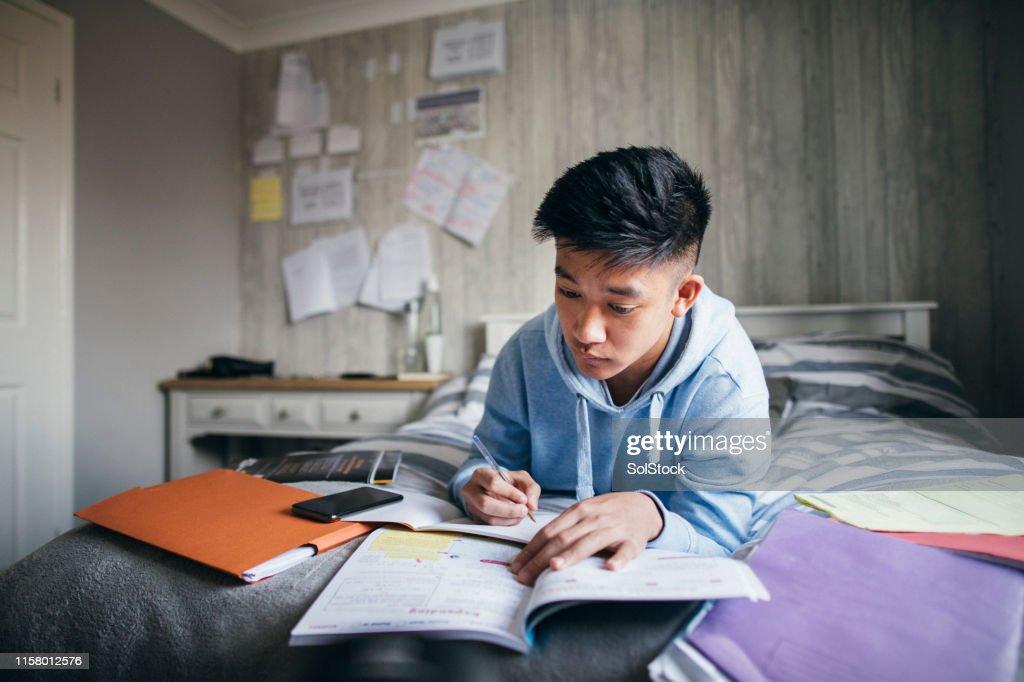Vorbereitung auf Prüfungen : Stock-Foto