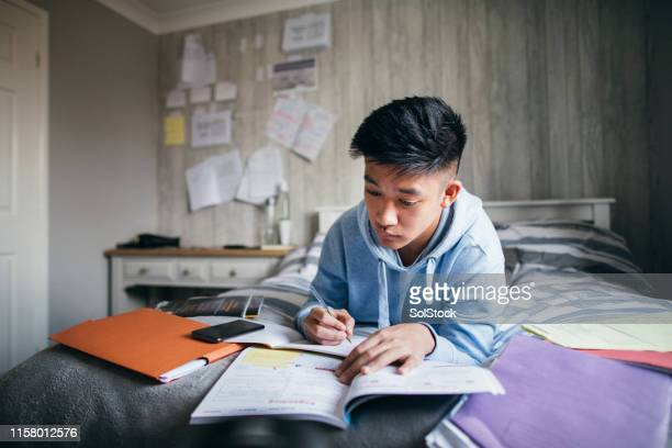 preparing for exams - boys stock pictures, royalty-free photos & images