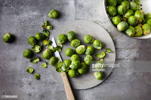 preparing organic brussels sprouts - 芽キャベツ ストックフォトと画像