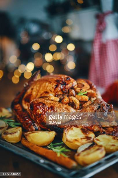 preparing stuffed turkey for holidays in domestic kitchen - roast turkey stock pictures, royalty-free photos & images