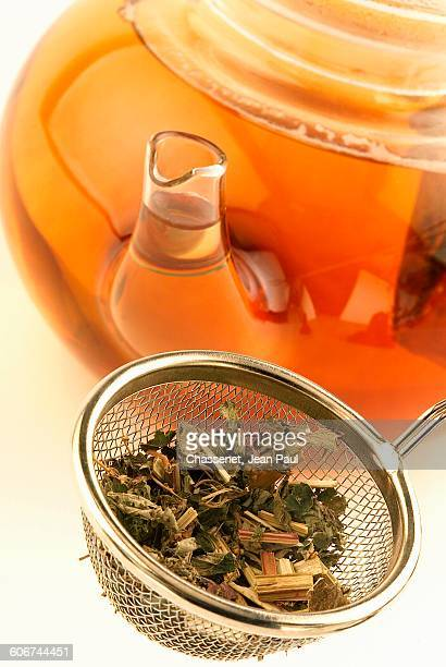 preparing the infusion - colander stock photos and pictures
