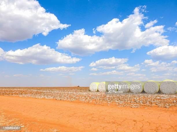 preparing the soil for the new crop - セラード ストックフォトと画像