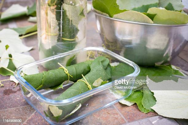 preparing to pickle fresh grape leaves - david canning stock pictures, royalty-free photos & images