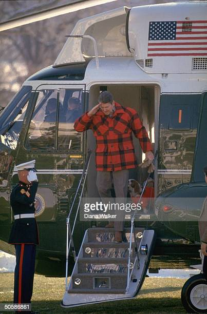 Pres Reagan returning salute fr whitegloved marine while exiting Marine One copter w 1st dog Rex in tow arriving at WH fr Camp David