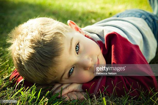 preschool aged boy lying on grass - rebecca nelson stock pictures, royalty-free photos & images