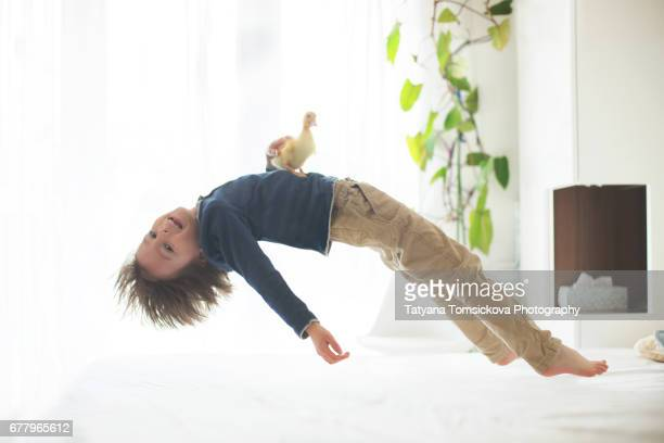 Preschool child, levitating over the bed, little duckling sitting on his belly