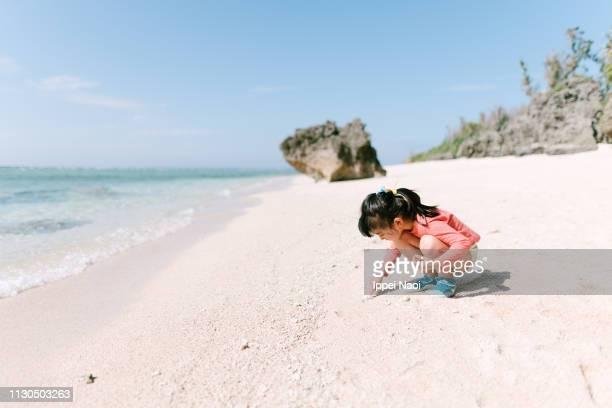 Preschool girl beachcombing on idyllic tropical beach, Okinawa, Japan