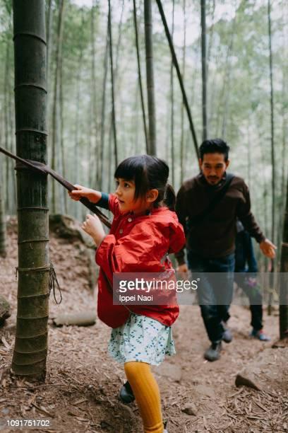 Preschool girl hiking through bamboo forest in mountain