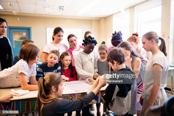presentation of cute hedgehogs in the classroom by schoolgirls - state school stock pictures, royalty-free photos & images