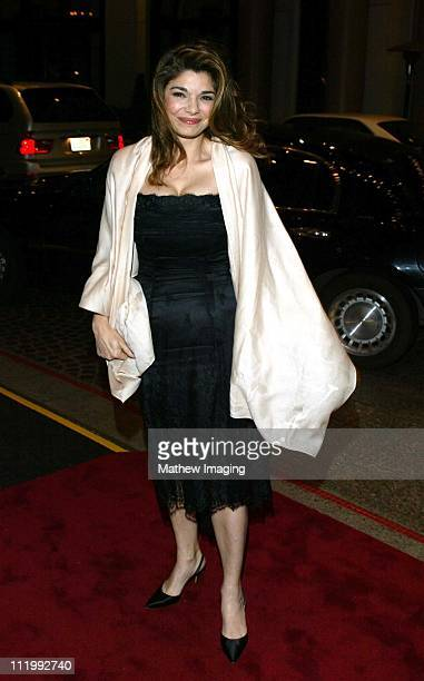 Presenter Laura San Giacomo during Costume Designers Guild Awards at Regent Beverly Wilshire Hotel in Beverly Hills CA United States
