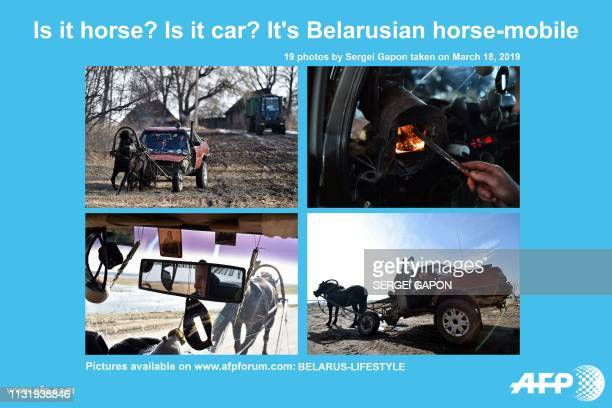 AFP presents a photo essay of 19 images by photographer Sergei GAPON on a 'horse mobile' a horsepulled cart made from an old Audi 80 car More images...
