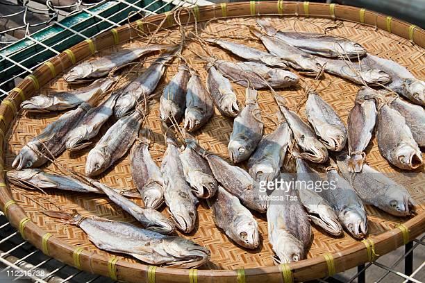 Preserved salted fish in Tai O, Hong Kong