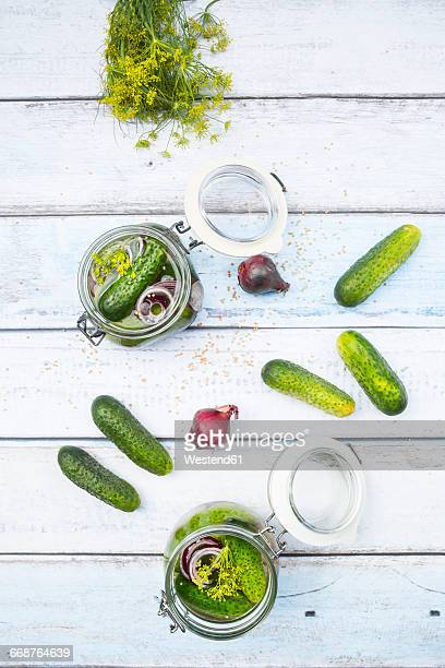 Preserving jars of gherkins and cucumbers