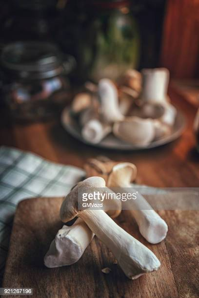 preserving organic mushrooms in jars - king trumpet mushroom stock pictures, royalty-free photos & images