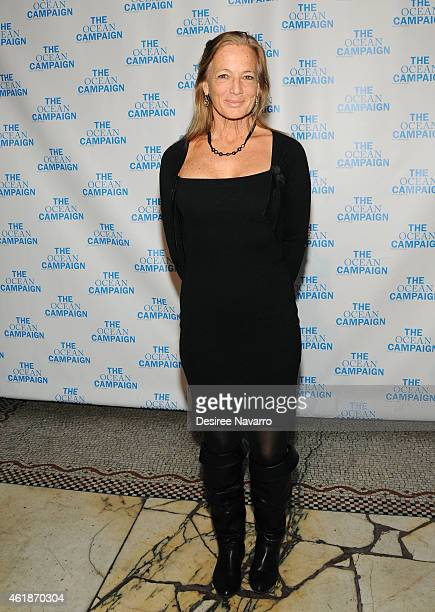 President and Director of the Cetacean Research and Conservation Nan Hauser attends The Ocean Campaign Launch Gala at Capitale on January 20 2015 in...