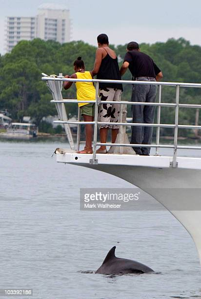 US President Barack Obama first lady Michelle Obama and daughter Sasha watch as a dolphin swims next to their boat Bay Point Lady as they tour St...