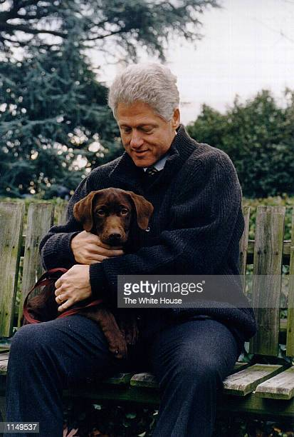 President Bill Clinton with his new dog, a three month old choclate labrador puppy. The puppy which belongs to Clinton friend Tony Harrington will...