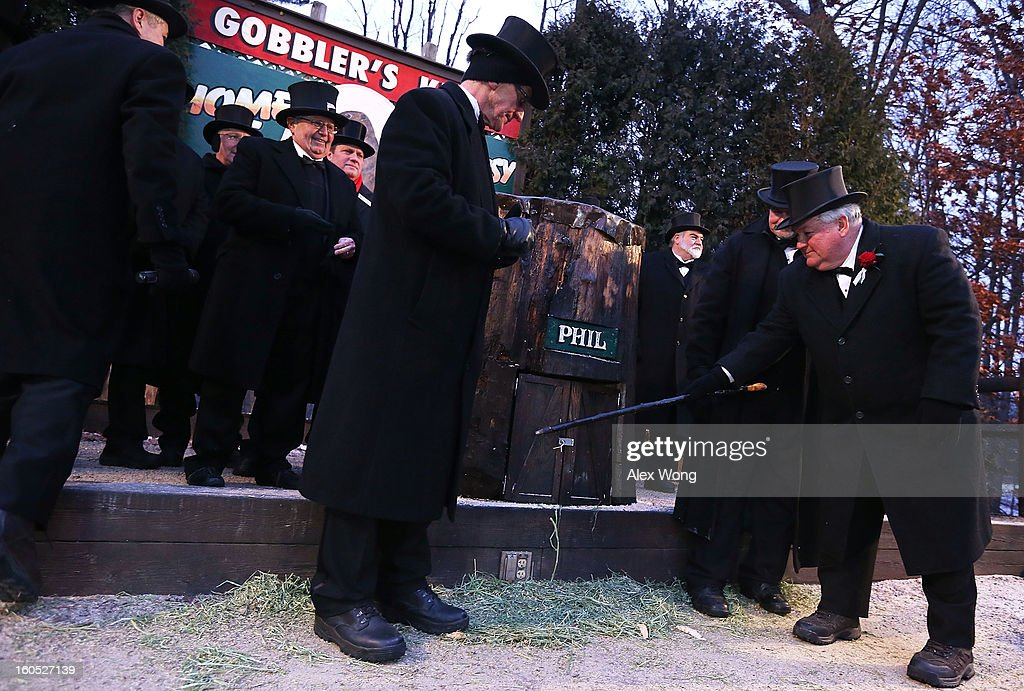 President Bill Deeley (R) of Punxsutawney's 'Inner Circle' tap on the door of Punxsutawney Phil's burrow as he and groundhog co-handlers John Griffiths (2nd R) and Ron Ploucha (3rd L) entice Phil out during the 127th Groundhog Day Celebration at Gobbler's Knob on February 2, 2013 in Punxsutawney, Pennsylvania. The Punxsutawney 'Inner Circle' claimed that there were about 35,000 people gathered at the event to watch Phil's annual forecast. Phil did not see his shadow and predicting an early spring.