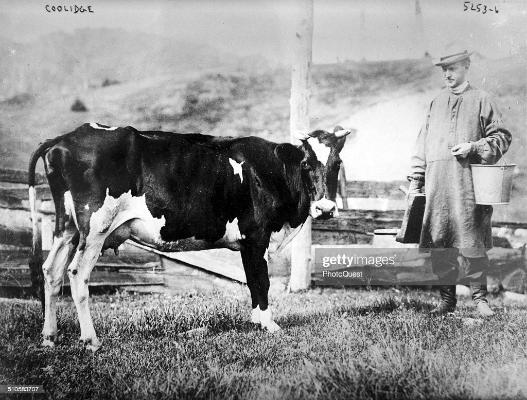 Coolidge & Cow : News Photo