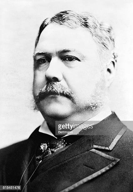 President Chester A Arthur 21st President of the United States Head and shoulders photograph ca 18811885