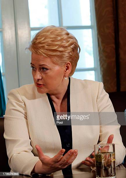 President Dalia Grybauskaite of Lithuania speaks in a meeting with President Barack Obama along with President Toomas Hendrik Ilves of Estonia and...