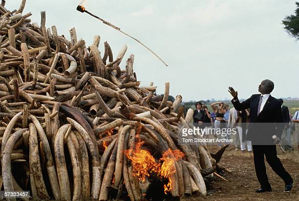 President Daniel Arap Moi ignites $3 million of ivory and rhino horn confiscated from poachers by Kenya National Park game wardens