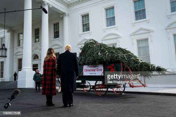 President Donald J Trump and first lady Melania Trump view the arrival of the White House Christmas tree at the North Portico of the White House on...