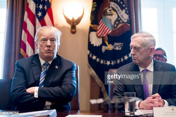 US President Donald J Trump speaks beside US Secretary of Defense Jim Mattis during a meeting with members of his Cabinet in the Cabinet Room of the...