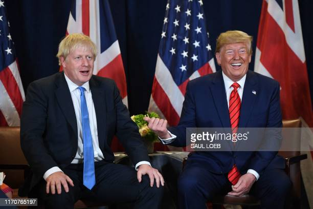 President Donald Trump and British Prime Minister Boris Johnson hold a meeting at UN Headquarters in New York September 24 on the sidelines of the...