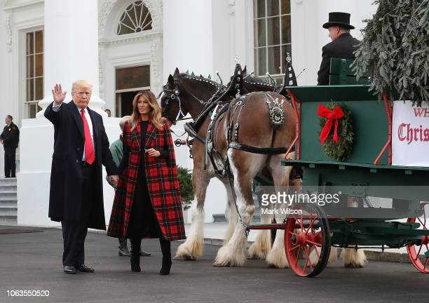 S President Donald Trump and first lady Melania Trump attend the arrival of the North Carolina grown Fraser Fir Christmas tree at the North Portico...
