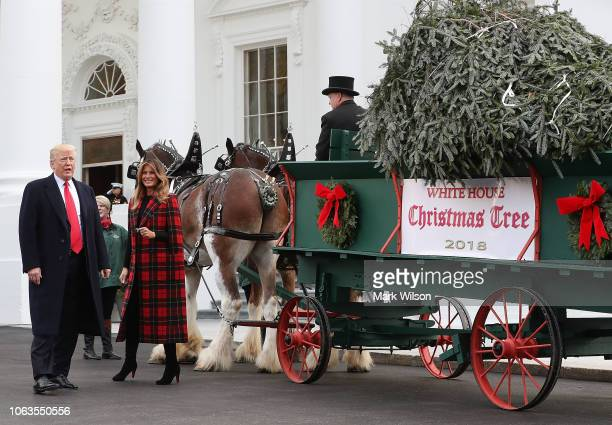 S President Donald Trump and first lady Melania Trump look at the North Carolina grown Fraser Fir Christmas tree at the North Portico as it makes its...