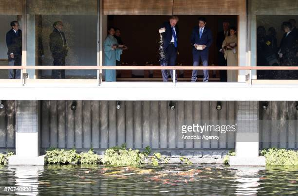 S President Donald Trump and Japanese Prime Minister Shinzo Abe feed carps before their working lunch at Akasaka Palace in Tokyo Japan on November 6...