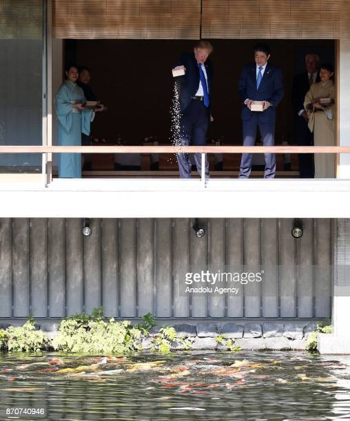 President Donald Trump and Japanese Prime Minister Shinzo Abe feed carps before their working lunch at Akasaka Palace in Tokyo, Japan on November 6,...