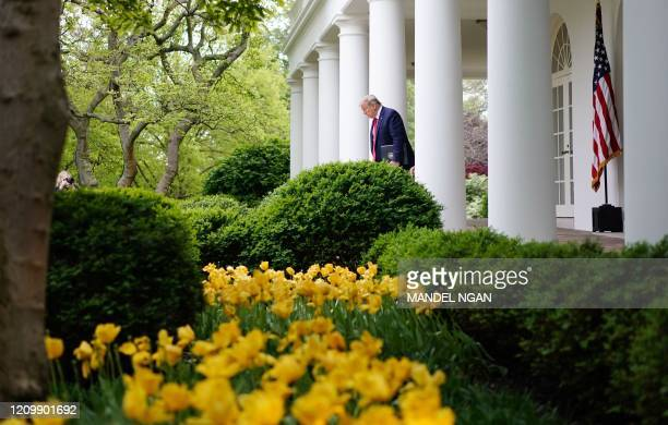 President Donald Trump arrives for the daily briefing on the novel coronavirus, which causes COVID-19, in the Rose Garden of the White House on April...