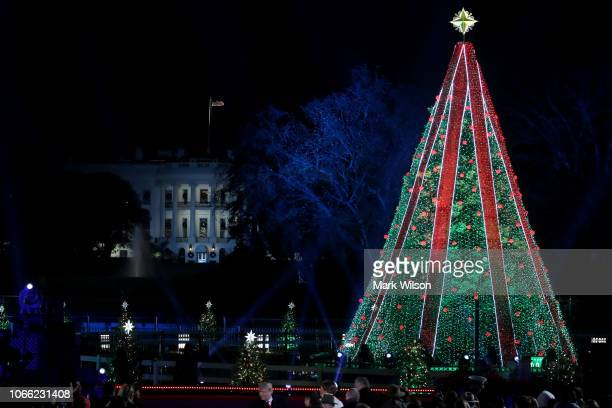 National Christmas Tree Lighting.World S Best National Christmas Tree Stock Pictures Photos