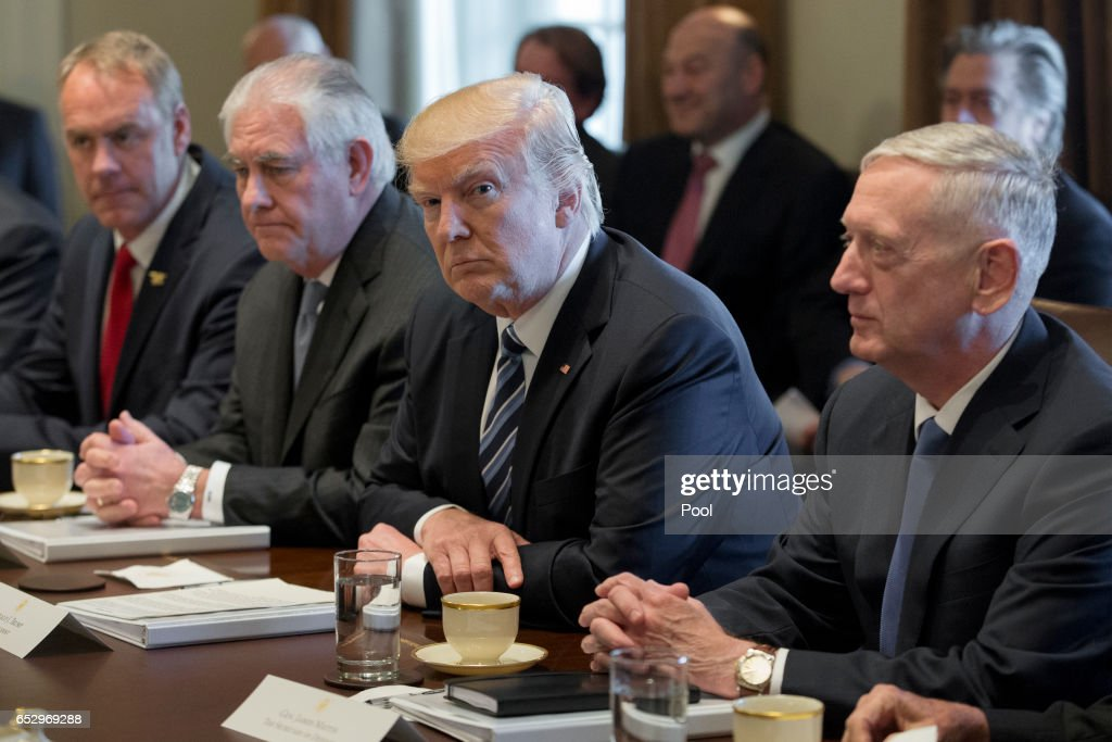 President Donald Trump (C) holds a meeting with members of his cabinet including Secretary of the Interior Ryan Zinke (L), Secretary of State Rex Tillerson (2-L) and Secretary of Defense James Mattis (R) in the Cabinet Room of the White House on March 13, 2017 in Washington, DC. This was the first official meeting of Trump's cabinet.