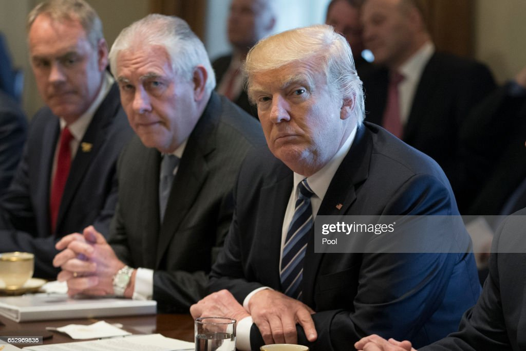 President Donald Trump holds a meeting with members of his cabinet including Secretary of the Interior Ryan Zinke (L) and Secretary of State Rex Tillerson (2-L) in the Cabinet Room of the White House on March 13, 2017 in Washington, DC. This was the first official meeting of Trump's cabinet.