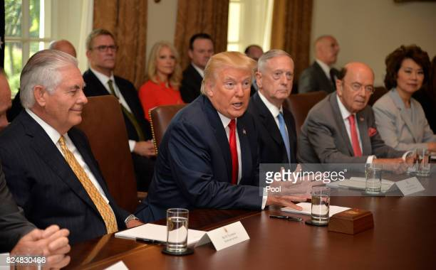 President Donald Trump makes remarks during a meeting of his cabinet including Secretary of State Rex Tillerson Defense Secretary James Mattis...