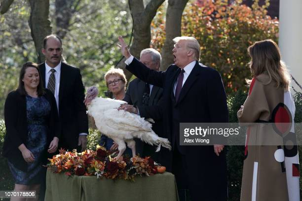 S President Donald Trump participates in a turkey pardoning event as one of the two candidate turkeys Peas stands on a table at the Rose Garden of...