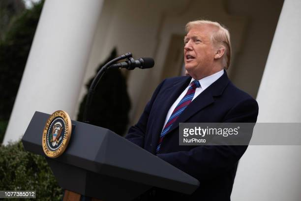 President Donald Trump speaks to and takes questions from the media in the Rose Garden of the White House after meeting with Democratic leadership to...