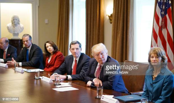 US President Donald Trump takes part in a meeting with bipartisan members of Congress on infrastructure in the Cabinet Room of the White House on...