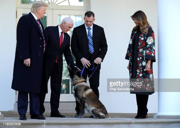 S President Donald Trump Vice President Mike Pence and first lady Melania Trump pose for photographs with Conan the US military K9 that assisted in...