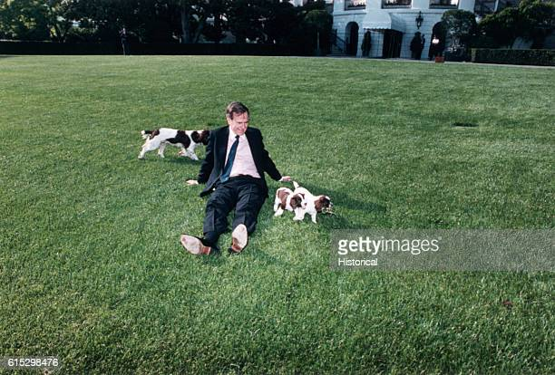 President George Bush sitting on the White House lawn with springer spaniel Millie and puppies May 4 1989