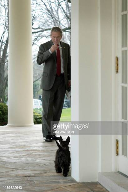 US President George W Bush calls for his dog Miss Beazley from the Oval Office before meeting with the incoming commander of the NATO International...