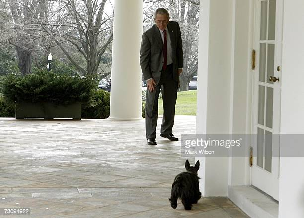 S President George W Bush calls for his dog Ms Beazley outside of the Oval Office after his arrival back at the White House January 24 2007 in...