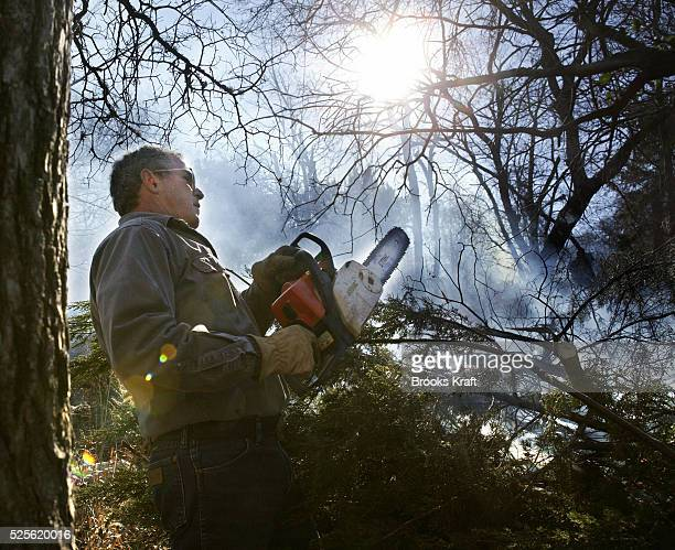 US President George W Bush clears and burns cedar underbrush on the Bush Ranch In the dry climate the cedar absorbs a significant amount of ground...