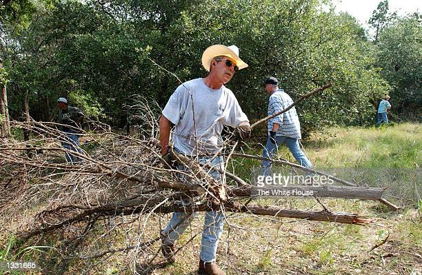 S President George W Bush clears cedar at his ranch August 9 2002 in CrawfordTexas Bush is working from his 1600acre ranch in Texas for about a month